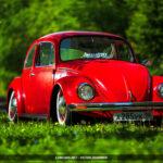 Volkswagen Beetle Low