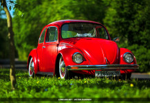 Volkswagen Beetle Low