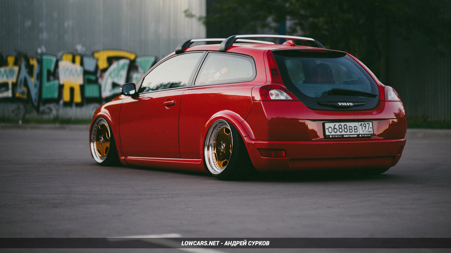Volvo C30 Bagged Parrot